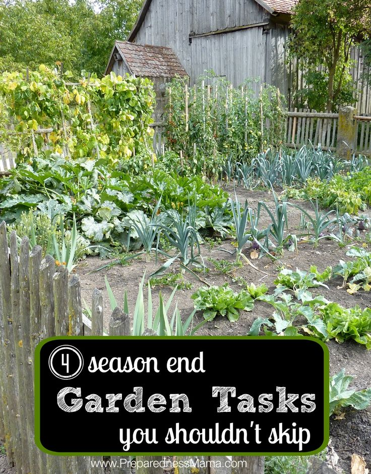 These 4 season end garden tasks will improve your soil, reduce the weeds you have in the spring, and get your soil warmed up so you can plant earlier.