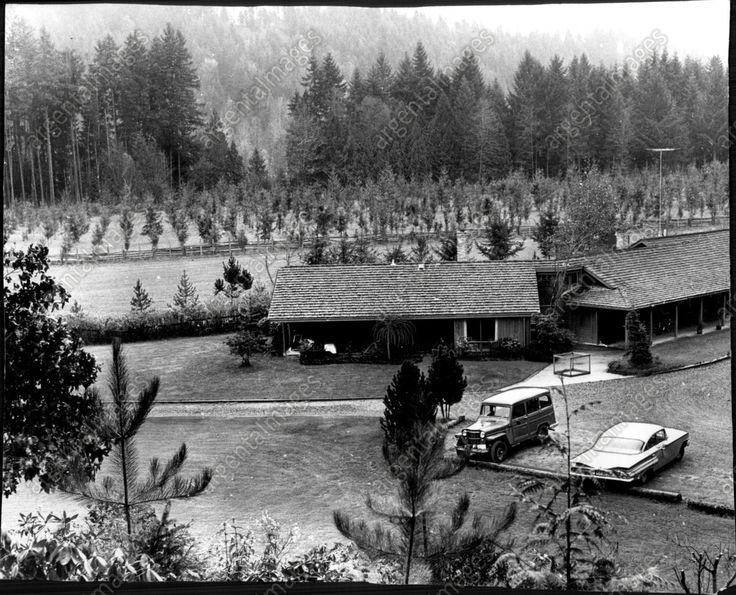 1969 Tree Planting and Farms Tomolla Press Photo | eBay