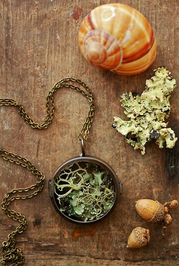 Irish lichen necklace terrarium locket by RubyRobinBoutique