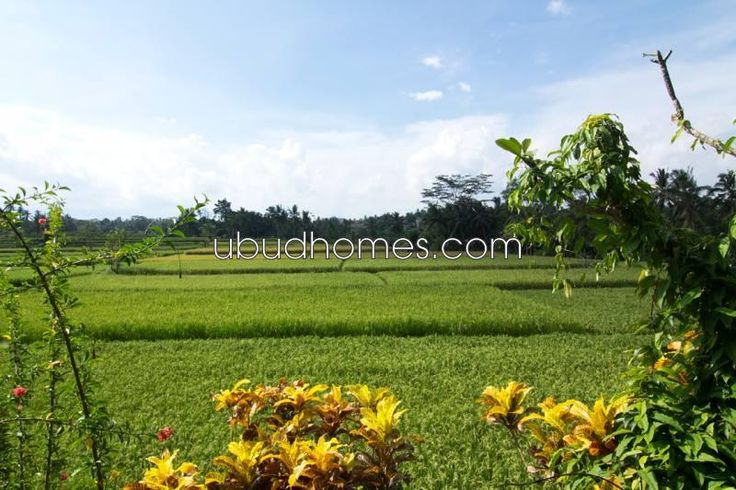 VLH03 - Ubud Homes