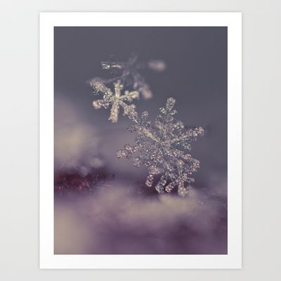 #macro #snowflakes #soft  The Closer I Get Art Print by Marisa M. Johnson
