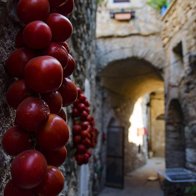 Instagram media ipekyagal -  #mesta #chios #greece