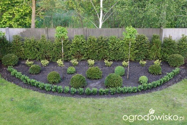 To tu... - strona 165 - Forum ogrodnicze - Ogrodowisko