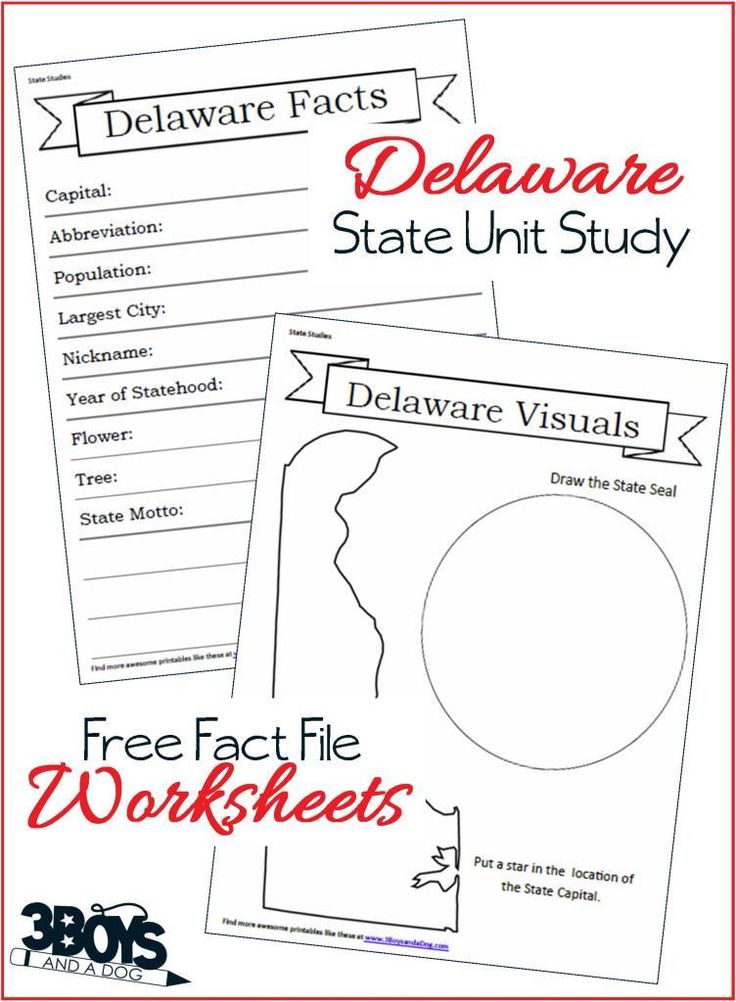 69 best 50 States Unit Study images on Pinterest | 50 states, Unit ...