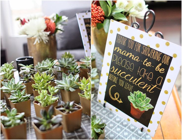 Shades of Gray: Black, White & Gold Shower with Succulents