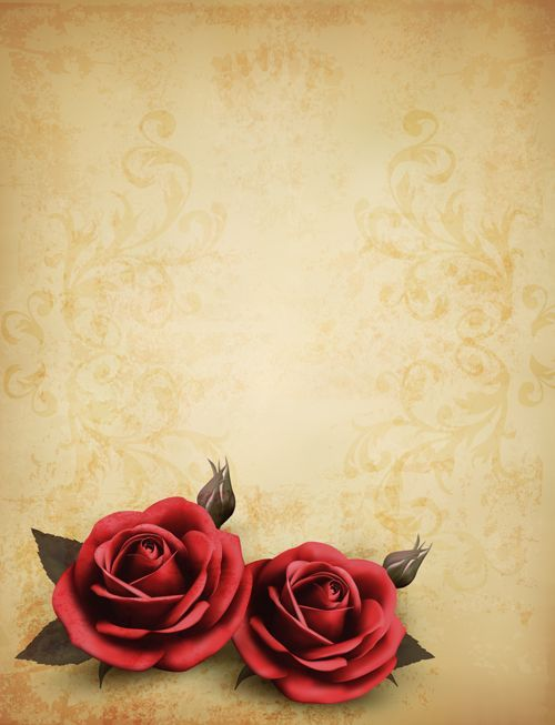 Roses and Vintage background vector 02