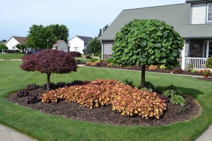 171 best island and berm gardens images on pinterest for Front yard landscaping plants