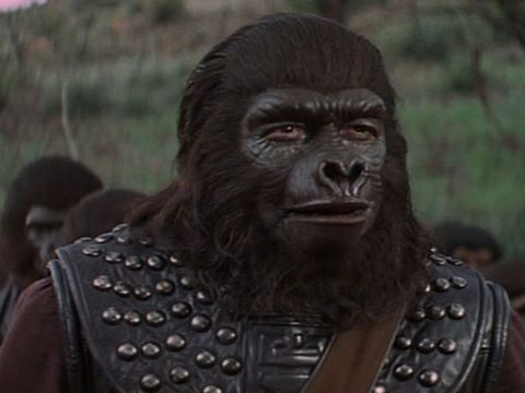 In the Planet of the Apes movie series, Aldo is the leader of the gorilla factions (and the ape...