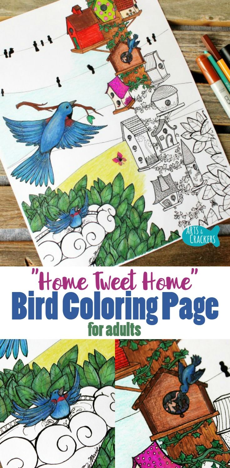 Free whimsical coloring pages for adults -  Home Tweet Home Birds Coloring Page For Adults