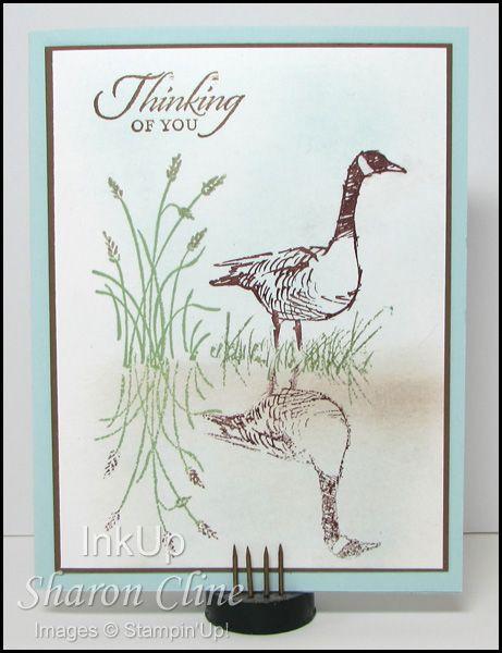 Wetlands Reflection - Wetlands, mirror, reflection, masculine (Sharon Cline - InkUp)