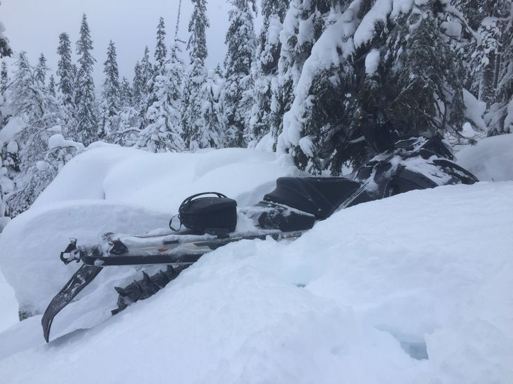 Deep snow pow pow Sälen