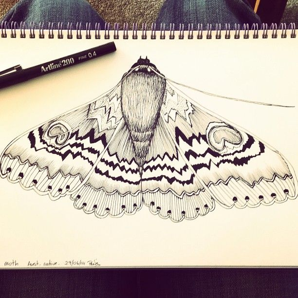 I moth draw and draw and draw  #pendrawing #blackandwhite #moth #sketch #patterns #possiblefabricdesign #smukdesign