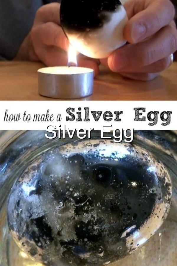 Silver Egg Experiment Science Experiments Kids Cool Science Experiments Fun Science