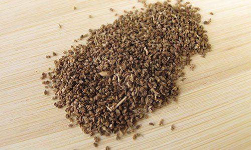 Celery seeds|セロリシード|ハーブ・スパイスの効能