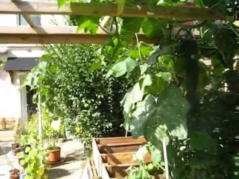 Mon jardin et potager urbain inspiré de la permaculture - Joseph CHAUFFREY