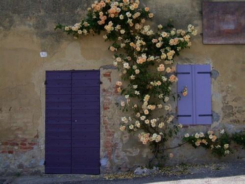 Murisengo Monferrato, Piedmonte Italy.. My grandmother was born here..