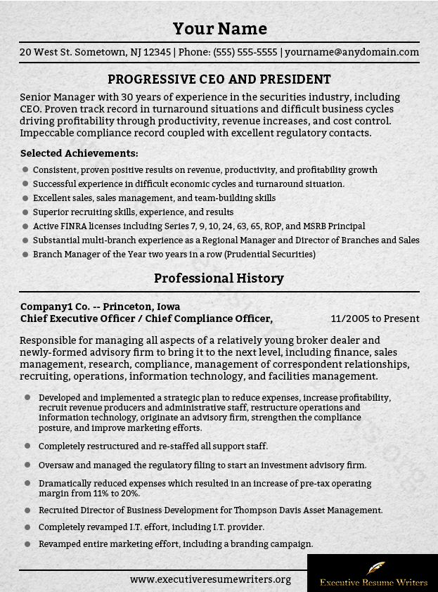 18 best Executive Resume Writers images on Pinterest Writer - chief executive officer resume