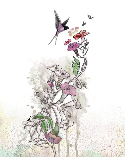 Humming Bird, Ink Drawing, Watercolor Flower, Fuchsia Flowers, Original Illustration, Whimsical Art, Bontical Art, Floral Painting. $15,00, via Etsy.