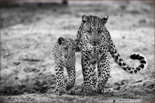 Lacadeema and mommy