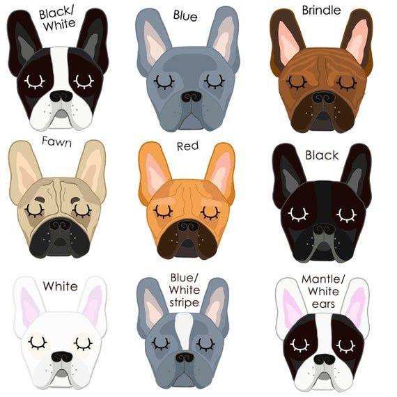 French Bulldog Personalised Rainbow Pet Id Tag French Bulldog