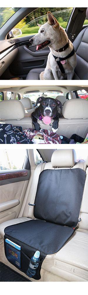 Ihr #Hund 🐶reist mit Ihnen in einem #Auto? 🚗Hast du Angst, dass er die Sit…