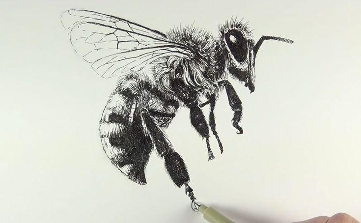 пчелы в графике картинки владелец ресторана или