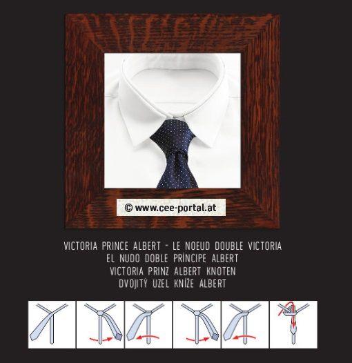 VICTORIA/PRINCE ALBERT ~ LE NOEUD DOUBLE/VICTORIA EL NUDO DOBLE/ PRÍNCIPE ALBERT VICTORIA/PRINZ ALBERT KNOTEN DVOJITÝ UZEL/ KNÍŽE ALBERT