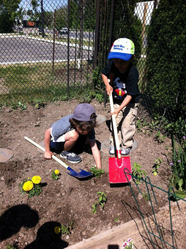 Reggio inspired blog about documentation and assessment - Learning Stories