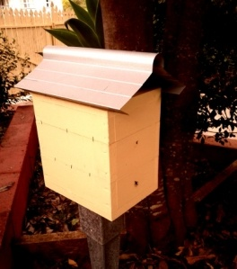 hive of native Australian bees for our garden.