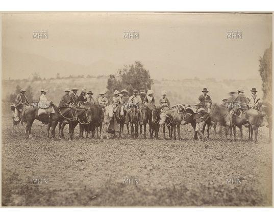 Chilean horse purebred- Caballo Chileno de pura raza record since 1893