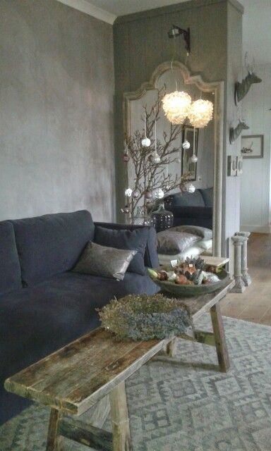 De Potstal - Chandelier hung from plant hanger, in front of large mirror.  Plaster walls.