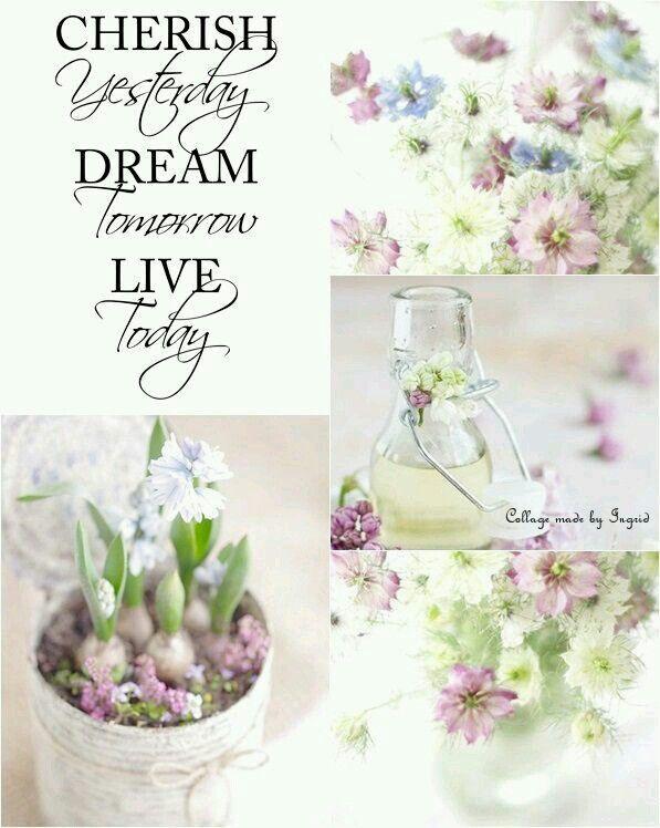 Cherish, live, dream