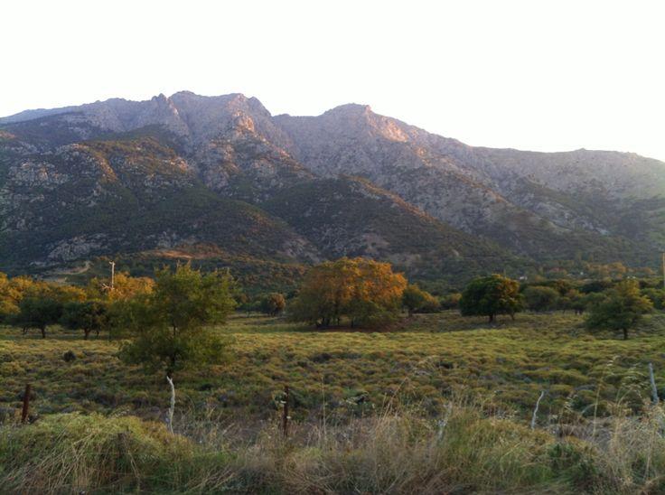 Saos mountain as seen from Kariotes
