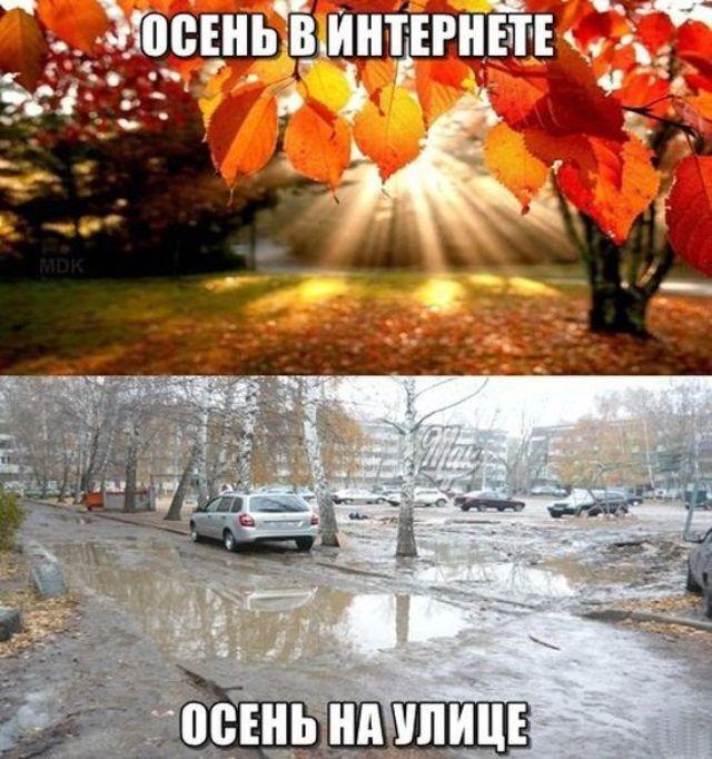 осень дождь демотиваторы для роли актеру