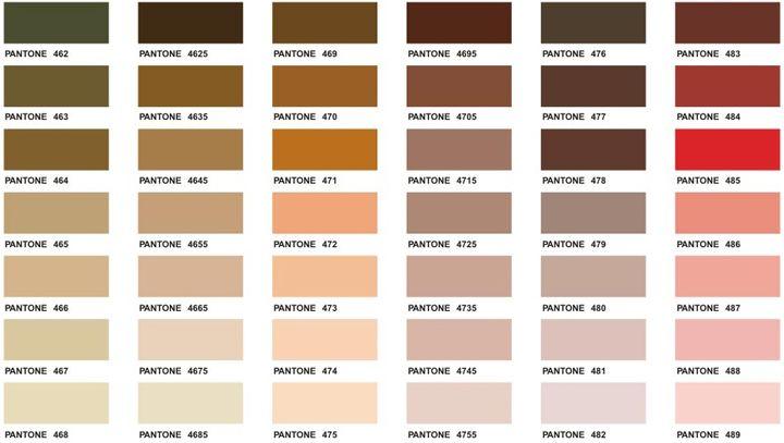 81 best images about pantone on Pinterest  Pantone Color Chart Brown