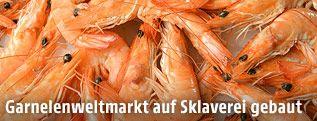 Garnelenweltmarkt auf Sklaverei gebaut