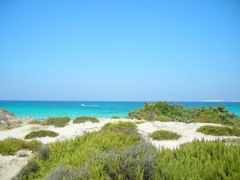 Spiaggia Punta della Suina (Gallipoli) - Salento - Puglia Punta della SUina beach, Gallipoli - Italy