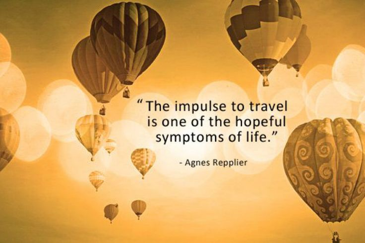 Image result for an impulse life