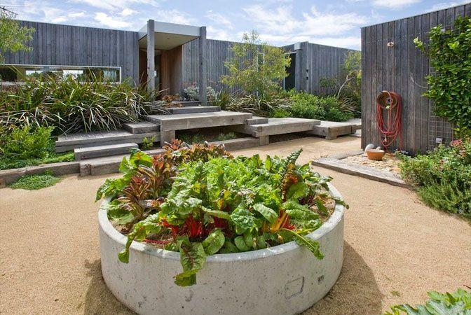 coastal container garden . concrete tube . veggie patch idea
