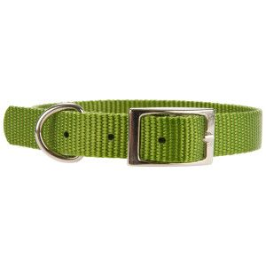 Belt buckle style collars - all sizes