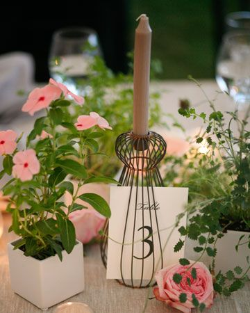 potted plants and garden roses - mini roses?