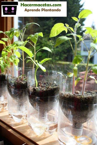 más de 25 ideas increíbles sobre jardinera con auto riego en