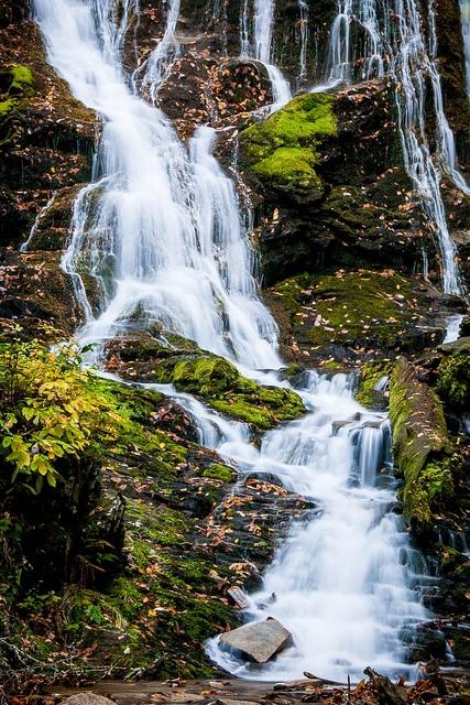 Mingo Falls - Great Smoky Mountains National Park, North Carolina     Travel the US for twenty bucks per day.
