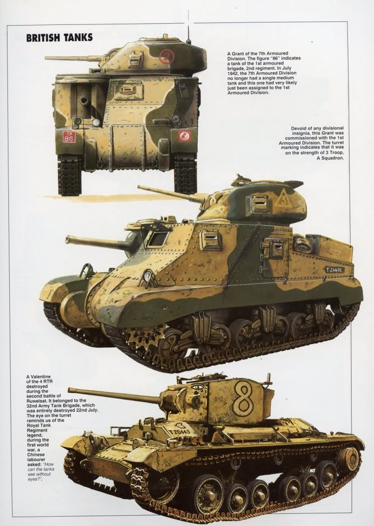BEF 8th Army M3 Lee & Valentine Cruiser Tank