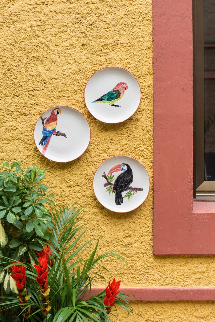 Plates Bird, Summer Paradise, Indoor Ideas, Furnishing and Decoration Ideas, Decoration, Outdoor Ideas, Parrott and Toucan Paintings