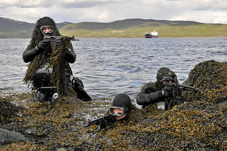 Russian Naval Spetsnaz, Northern Fleet. Note the APS underwater assault rifles. Photos V. Pliska and S. Koretz, 2012