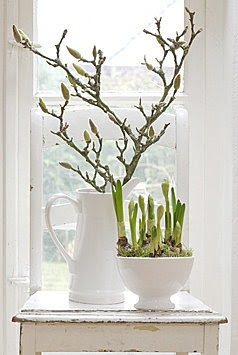 Simple arrangement in white jug
