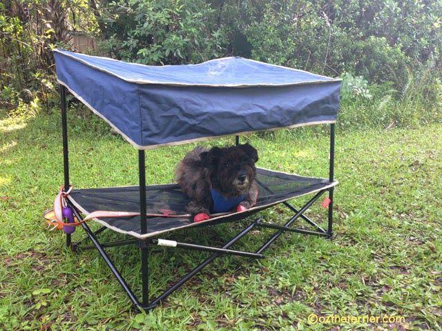 Outdoor Gear Quik Shade Pet