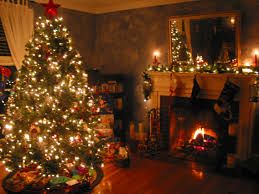 People love to put a Christmas tree at home as decorations during Christmas.