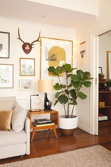 Vintage & modern home decor inspiration, giant plant, wall gallery, wooden floors.